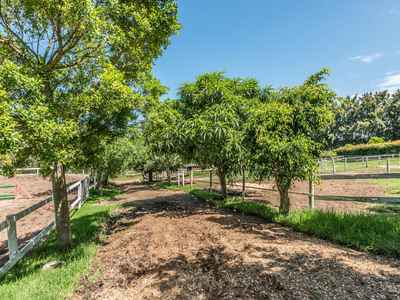 7 Bedroom Farm For Sale In George Rural - gallery_image1.jpg
