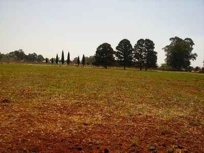 Vacant Land For Sale In Benoni Orchards - gallery_image1.jpg